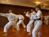 Training with Mazhari Sensei